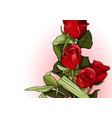 red roses bouquet greeting card vector image vector image