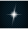sparkle light star 9 vector image vector image