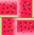 Watermelon portion background vector image vector image