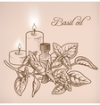 Basil essential oil and candles vector image vector image
