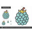 blackberry line icon vector image