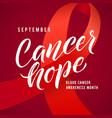 cancer hope blood cancer awareness label vector image vector image