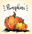 hand drawn pumpkins image with a lettering vector image vector image