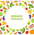 organic vegetables farm fresh colorful products vector image