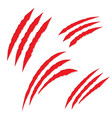 scratch claws vector image