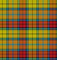 tartan buchanan seamless pattern vector image vector image