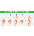 transparent set of counting hands vector image vector image