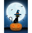Black cat wearing witches hat sit on pumpkin head vector image