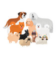 cartoon character loing hair big and small dogs vector image vector image