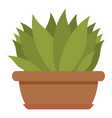house plant icon flat style vector image vector image
