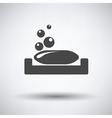 Soap-dish icon vector image vector image