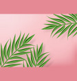 tropic palm leaves realistic background vector image vector image
