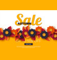autumn sale banner with 3d leaves and flowers vector image vector image