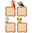 board template with cute birds on white background vector image
