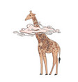 giraffe in pink clouds hand drawn african animal vector image vector image