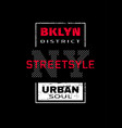 new york city brooklyn t-shirt graphics on a vector image vector image