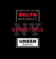 new york city brooklyn t-shirt graphics vector image vector image