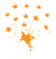 orange splash and maple leaves on a white vector image