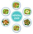 set of healthy salad vector image