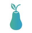 line delicious pear fruit nutrition vector image vector image