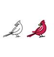 red cardinal small bird portrait vector image vector image