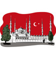 representing the blue mosque in istanbul at night vector image
