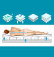 structure orthopedic mattress vector image vector image