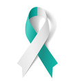 Teal and white ribbon vector image