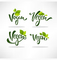 vegan healthy and organic green glossy leaves vector image vector image