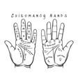 chiromancy hands vector image
