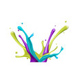 color water splash on white background vector image vector image