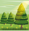 colorful background with pine trees and sunlight vector image vector image