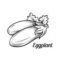 Hand drawn eggplant icon vector image
