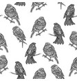 seamless monochrome pattern with bullfinches vector image vector image