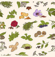 seamless pattern with various fresh tasty spices vector image vector image