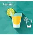 with glass of tequila in flat design style vector image vector image