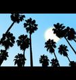 sky palm vector image