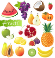 GREAT fruits set vector image