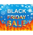 Big winter sale poster with BLACK FRIDAY SALE text vector image vector image