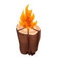 camping bonfire from tree trunk vector image vector image