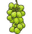cartoon doodle grapes vector image vector image