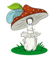 cartoon fly-agaric mushrooms vector image vector image