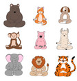 cute funny animals sitting and meditating in lotus vector image vector image