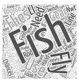 Fly Fishing Gear Word Cloud Concept vector image vector image