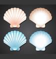 set of scallop seashell vector image