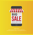 smartphone with big sale offer vector image vector image