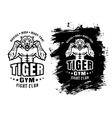 tiger gym ink vector image