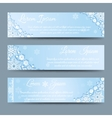 Winter snowflakes banner template set vector image vector image