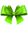Big green bow vector image