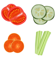vegetables sliced vector image vector image